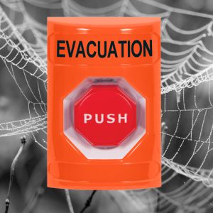 Orange push button switch